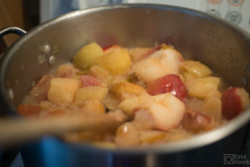 Cooking the apples down for sauce. We used a food mill to take out all the skins. Keeping the skins on made the sauce thicken due to the pectin in the skin.