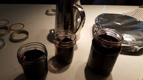 black raspberry and blueberry jams